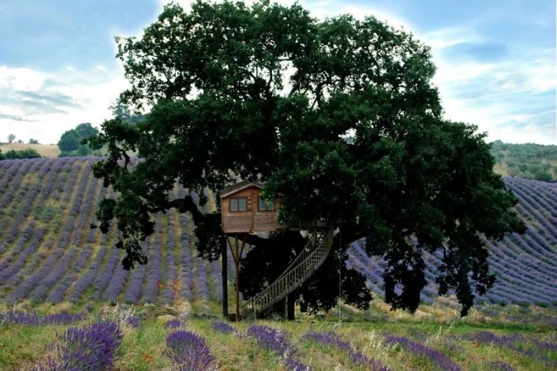 tree-houses-01