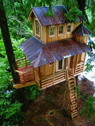 tree-houses-18