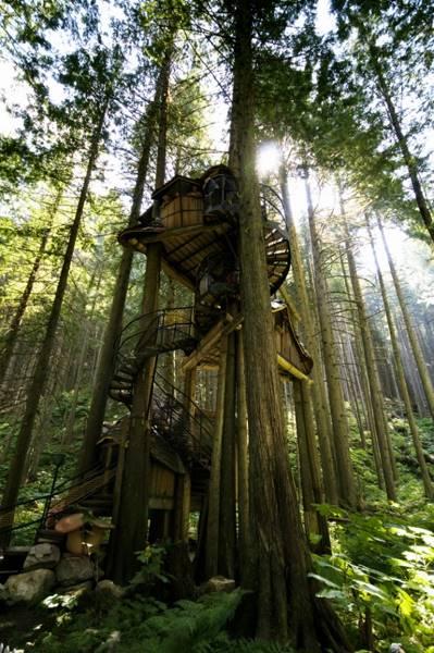 tree-houses-19