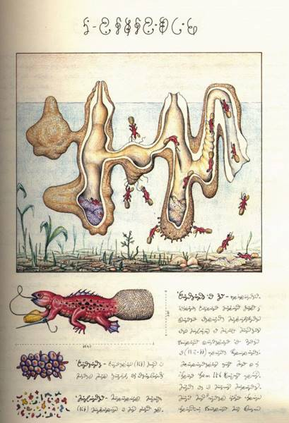 codex-seraphinianus-09