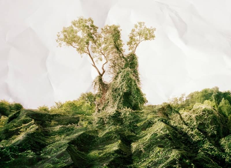 laura-plageman-06