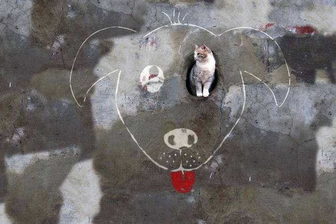 street-art-113