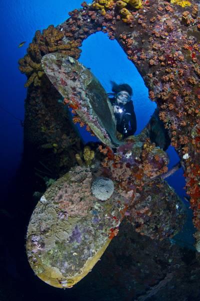 wrecked-underwater-12