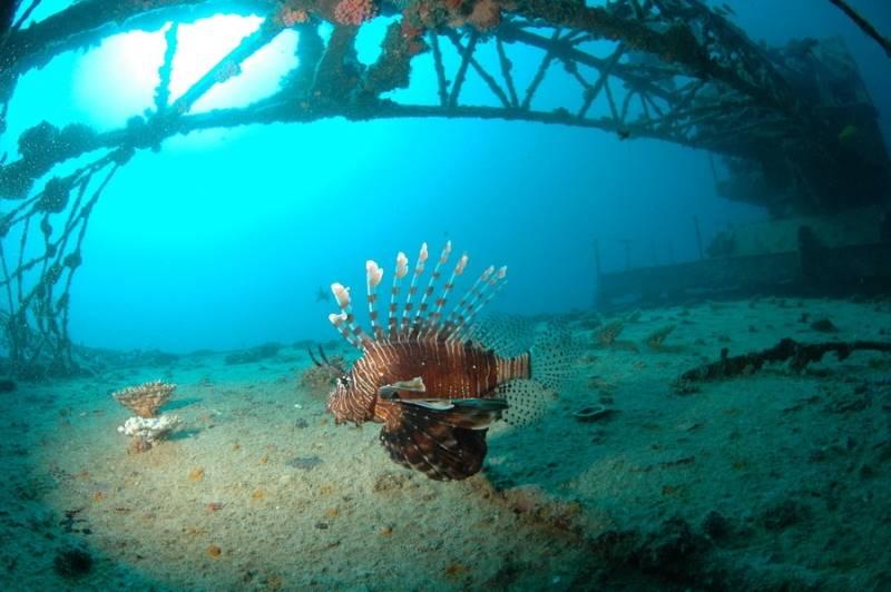 wrecked-underwater-15
