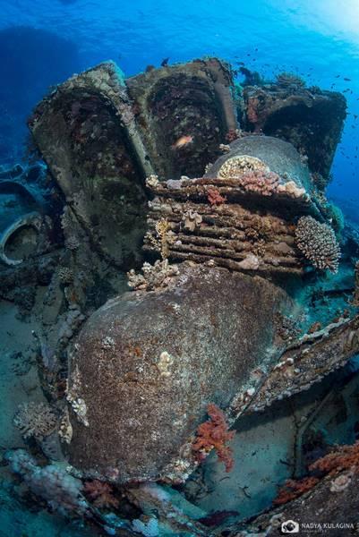 wrecked-underwater-18