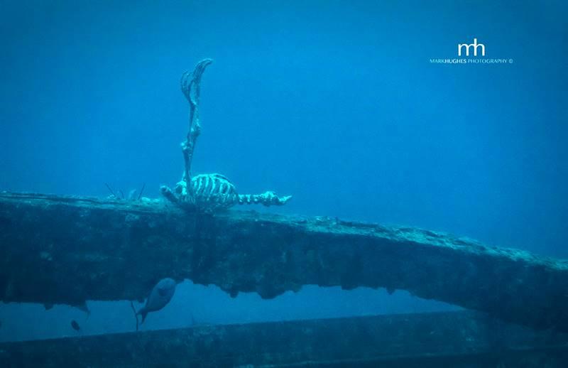 wrecked-underwater-31