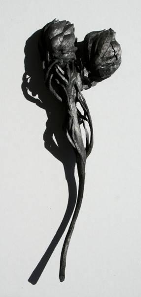 lynette-bester-06
