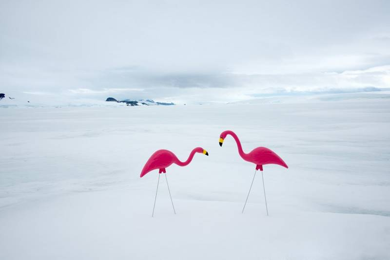 Gray-Malin_Antarctica_04
