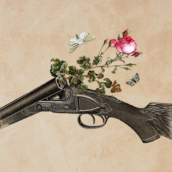 One Gun, One Rose, Two Moths