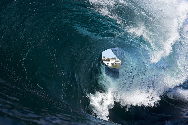 House - Ray Collins