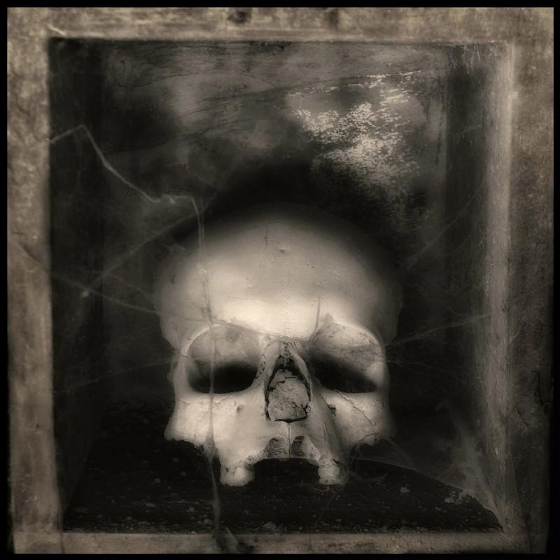 augusto-de-luca_memento-mori-01