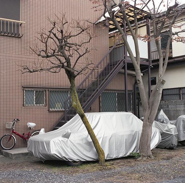 yoshinori-mizutani-28